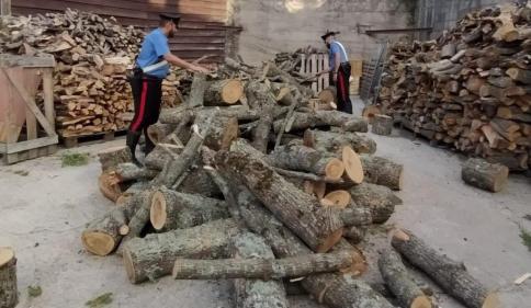 Tentato furto di legna - arresti CC Mistretta (1)