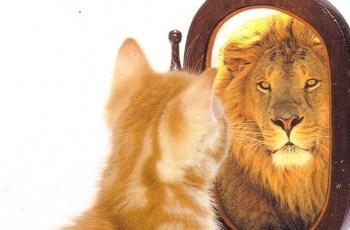 O que Jesus pode ensinar sobre a Autoestima?