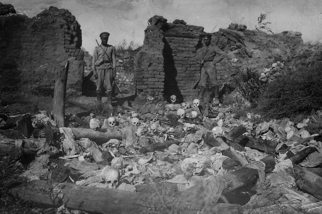 The Armenian Genocide controversy explained  Voice of the Cape