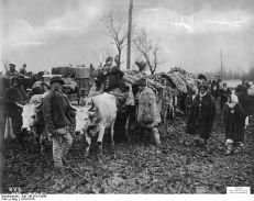 Coloana de refugiati romani ajunsa din urma de trupele germane