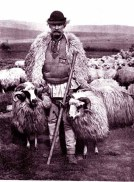 cioban din zona Sibiu