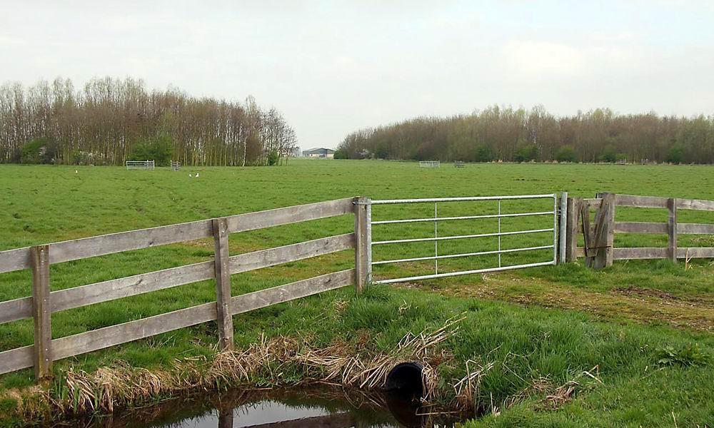 Holier-hoekse-polder