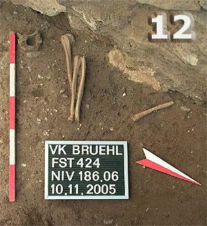 Fundstelle 424 in der Komplettansicht. Erhalten sind die rechten Unterarme und die linke Speiche. Der Rest ist im Oberkörperbereich vergangen, der Unterkörper ist wohl durch eine spätere Bestattung zerstört worden. Der Schädel ist durch den Bau der im oberen Bildteil sichtbaren Barockchormauer gestört und entfernt worden.
