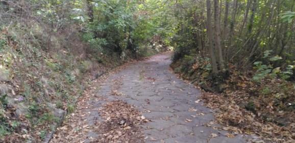 Un bel camminare nella seconda domenica di ottobre
