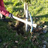 Controlli e piccola manutenzione al Parco Ibernesi nei primi giorni del 2019