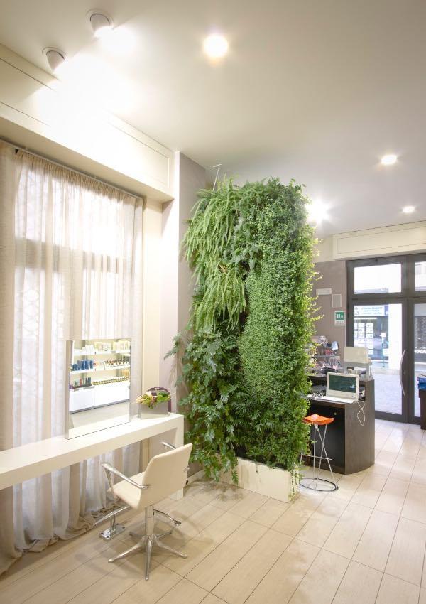 7 Meravigliosi benefici del giardino verticale interno