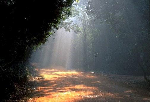 Auroville India