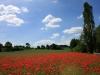 Monatsgewinner Oktober beim Fotowettbewerb »Mein Vogtland« kommt aus Kraftsdorf
