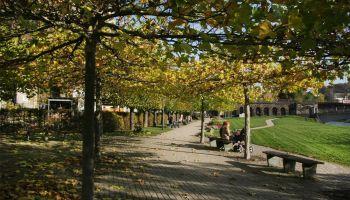 Im Fürstlich Greizer Park zeigt sich der Herbst