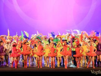 Musikschule Greiz: 15 Jahre tanz(un)art