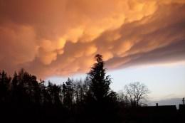 Wolken wie Wattebäusche