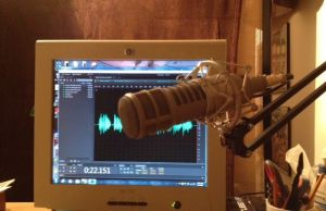 microphone in front of computer monitor showing audio graph