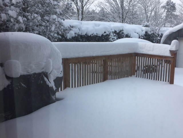 More than a foot of snow on the deck rails and top of the covered barbecue. In the background is our cedar hedge, also buried in snow