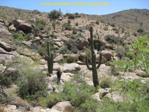 Derek stands between two cactuses that are at least 30 feet high each
