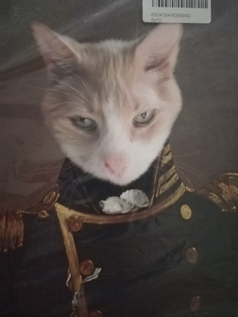 Spice wearing an admiral's coat, collar and appropriate brass buttons and decorations.