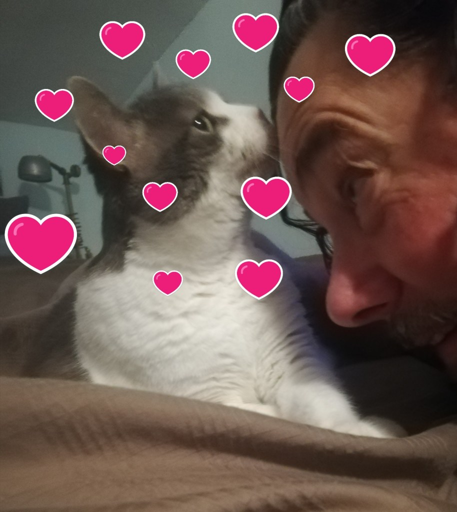 Derek and Sugar face to face with little red hearts all over the photo.