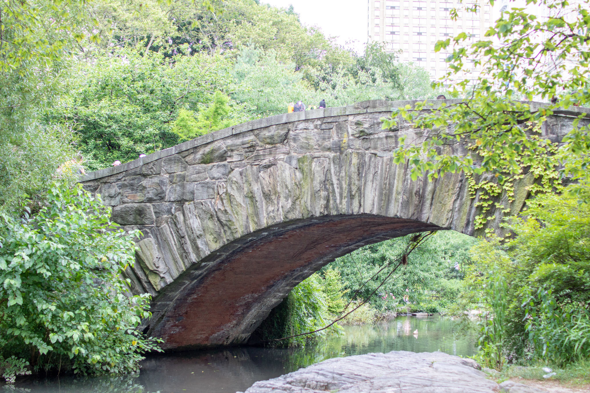 under gapstow bridge in central park NY