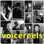 Voiceover+Demo+Company