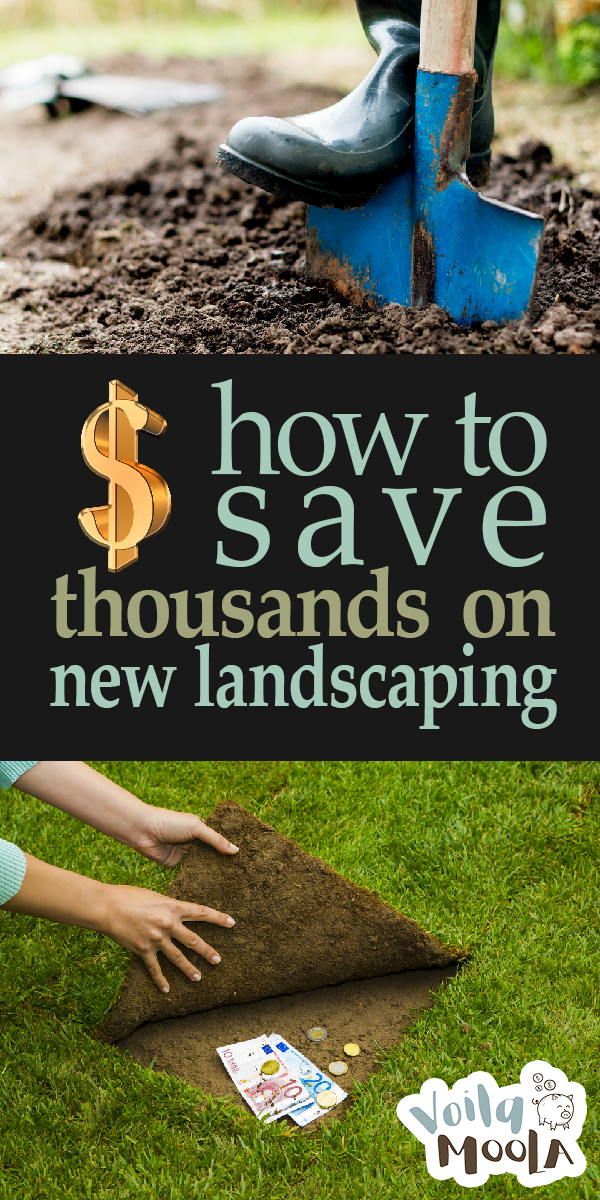 New Landscaping | New Landscaping Ideas | Save Money | Save Money on Landscaping | How to Save Money on New Landscaping