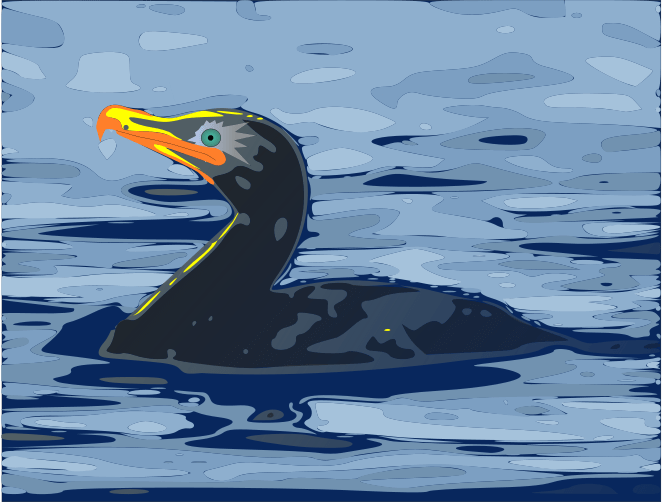 A drawing of a Black Ice Cormaguin