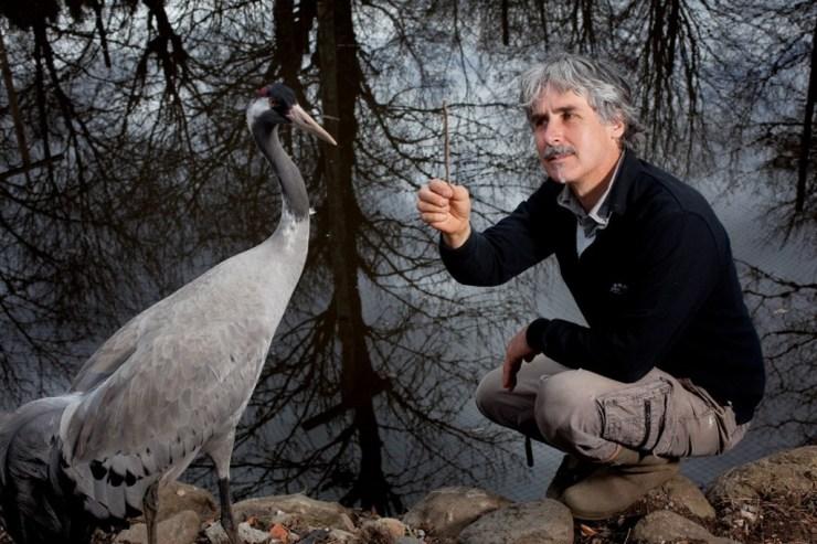 Sauvegarde des oiseaux migrateurs