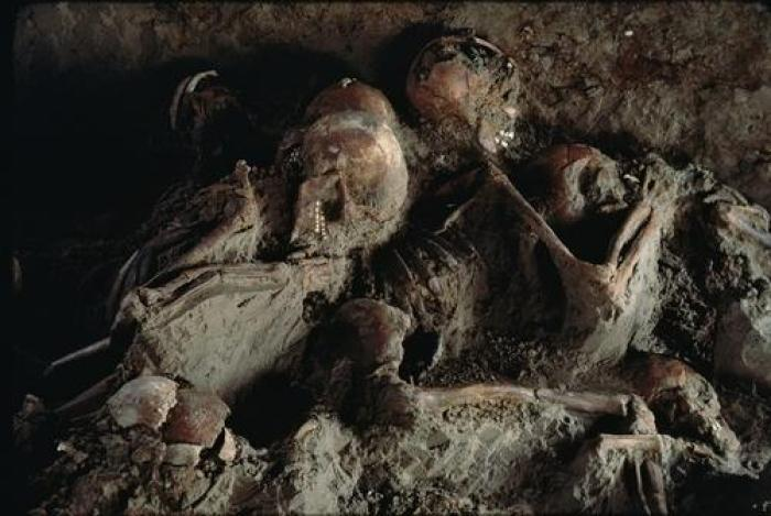 The dead of Herculaneum Exposed to up to 800 Centigrade hot pyroclastic flows from Vesuvius AD 79, they had time only to raise their arms to protect their faces before their brains boiled.  (O Louis Mazzatenta, National Geographic)