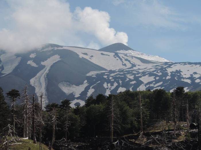 Will Etna remain on the new Decade Volcano Program? Or will Boris Behncke have to defend the existance? Many questions that slowly will get an answer. Photograph by Dr. Boris Behncke.