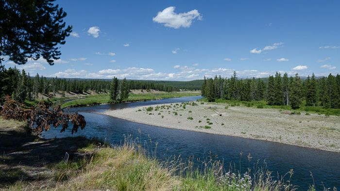 The Snake river in Yellowstone National Park. Source: Daniel Vorndran (Wikimedia)