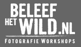 Beleef een Workshop bij