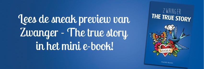 Banner-website-bericht-e-book