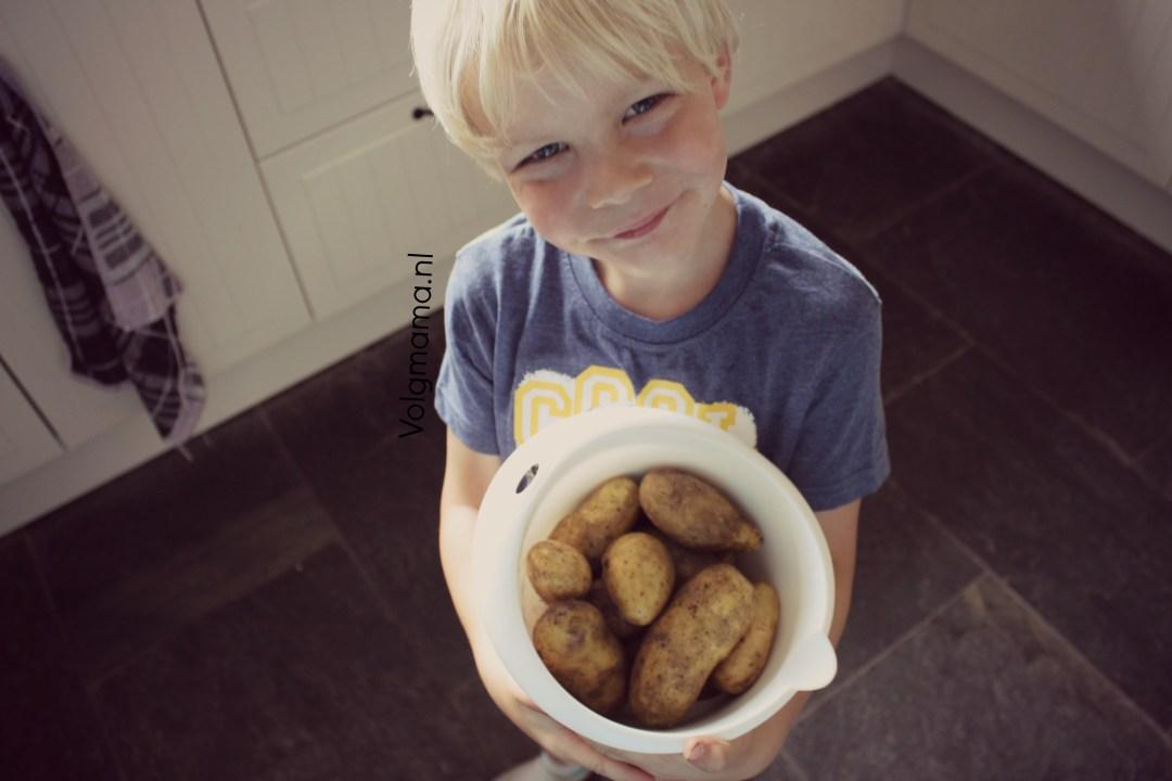 Aardappelen uit de moestuin - Volgmama