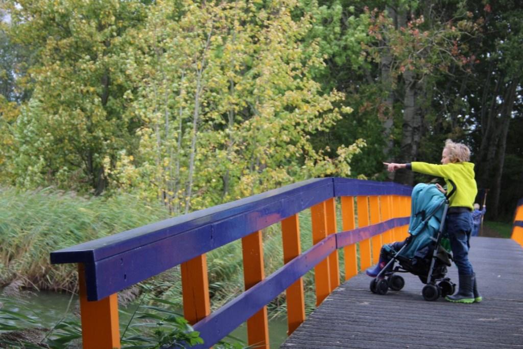 natuurpark-lelystad-met-kinderen