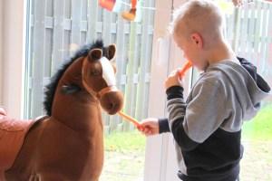 animal-riding-review-winactie