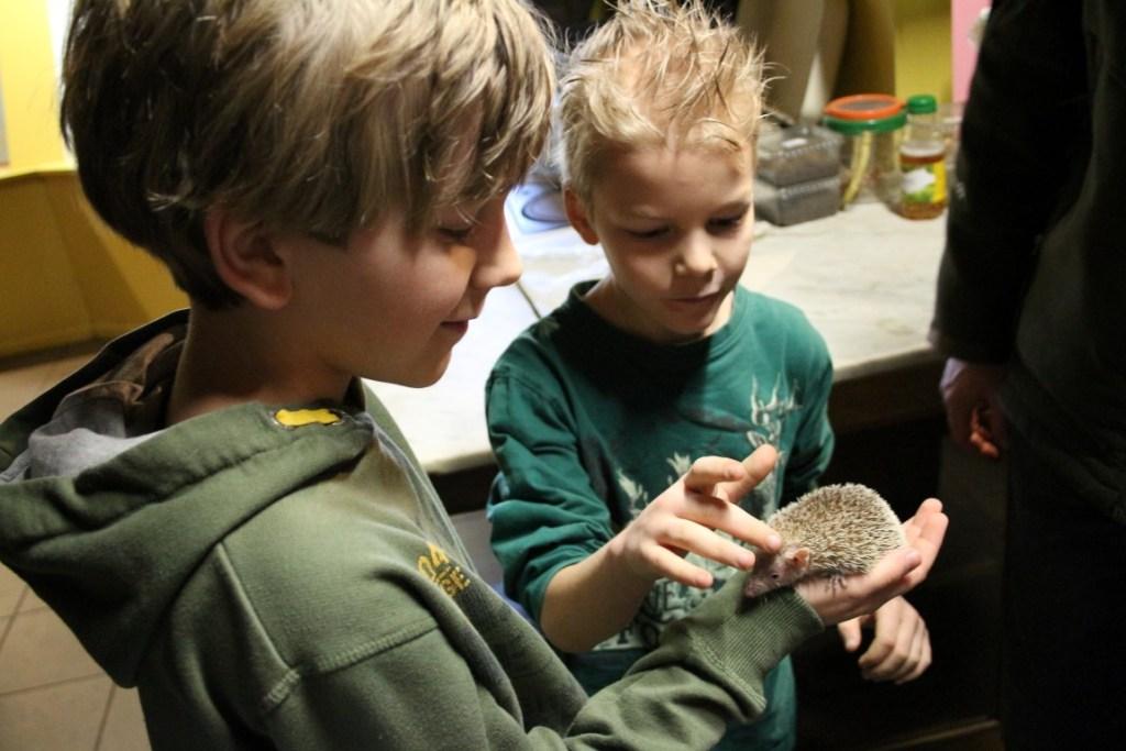 zoo-bizar-drenthe-review-landal-orveltermarke-orvelte-museumdorp