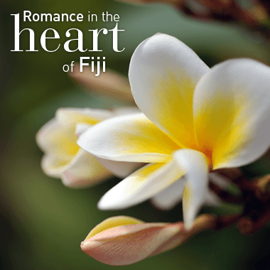 Romance and Spa in FIji