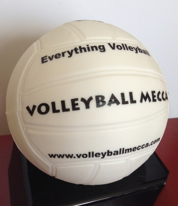 Custom Logo Print Mini Promotional Volleyball
