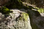 wp--20140323_Vollmers_2118