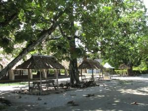 small kia kias by the mwaneaba to study or visit