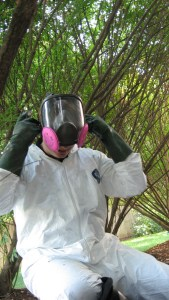 Volunteer Mold Knoxville getting suited up to remove mold from your nasty crawl space.