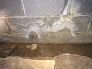 Standing water inside of a crawl space foundation trench. Water damaged the foundation footer and had frogs living in it.