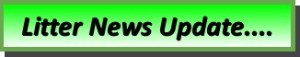 Litter News Update Rectangular Button