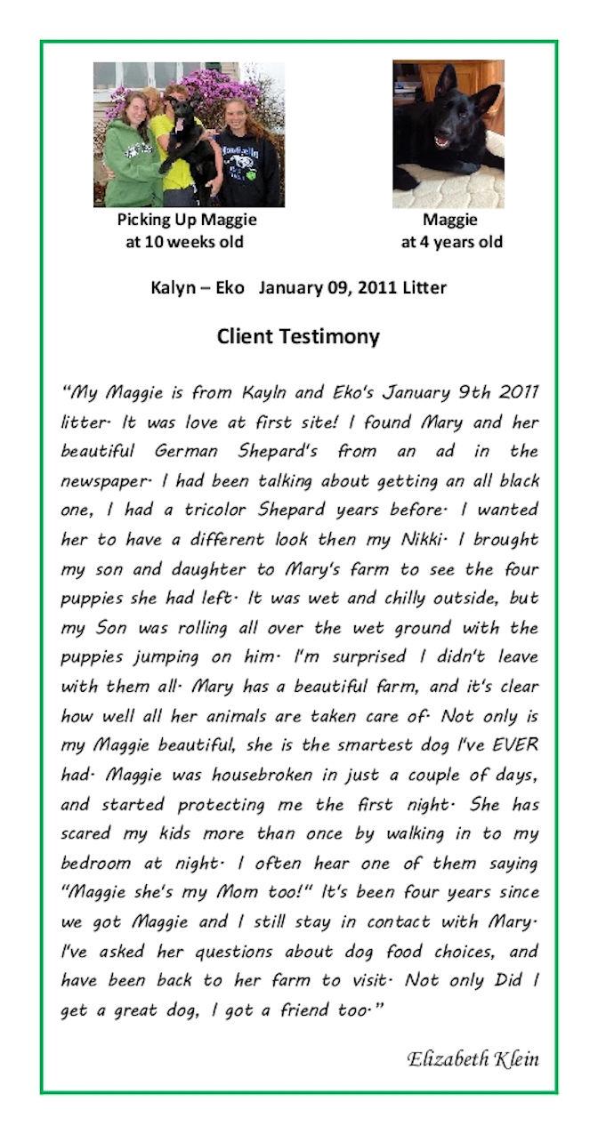 Elizabeth Klein Puppy Testimonial Resized