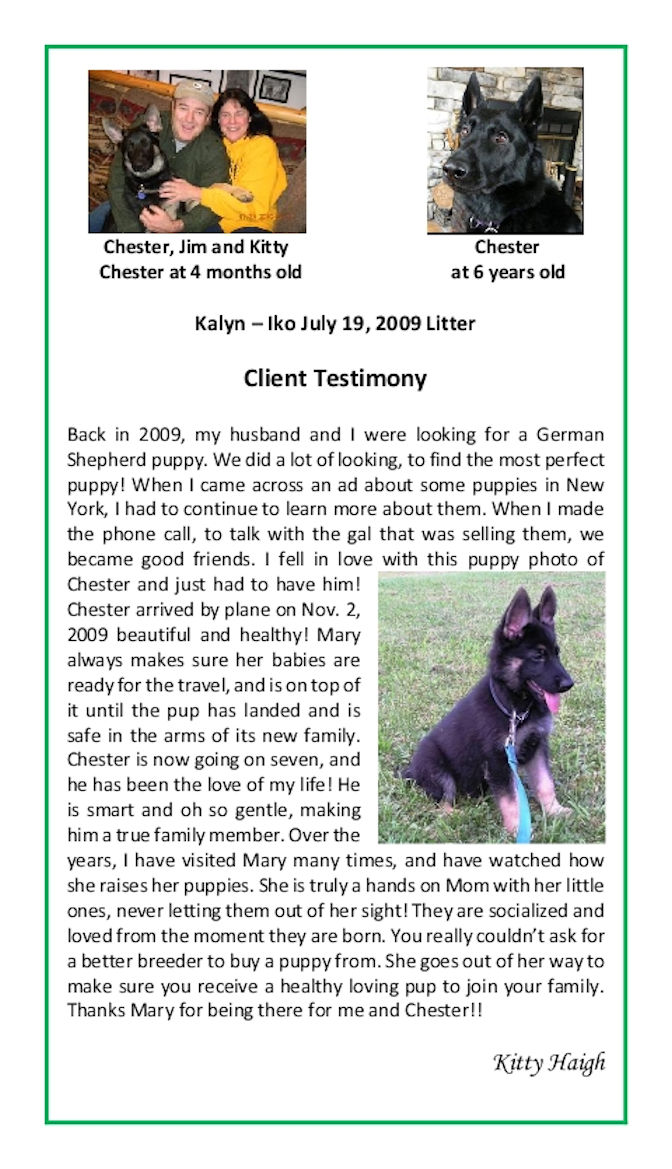 Kitty Haigh Puppy Testimonial Resized