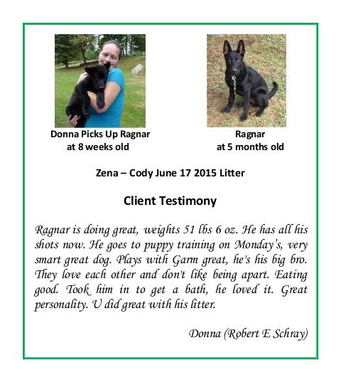Ragnar Donna Puppy Testimonial