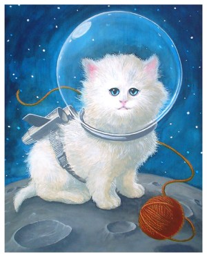 spacekitten