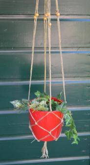 plantenhanger8