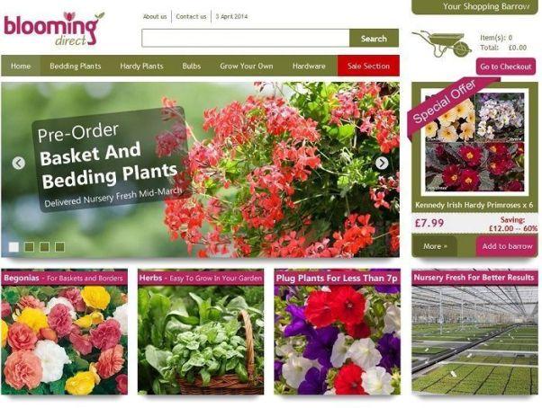 Bloomingdirect.com