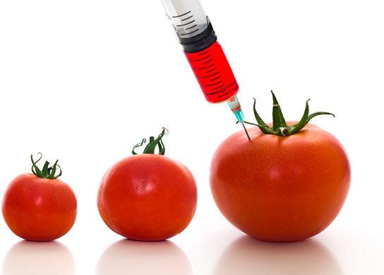 GMO's: