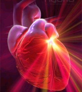 L'amour et le coeur