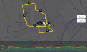 run 3 week 6